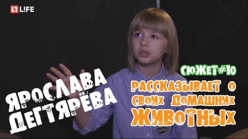 Ярослава Дегтярёва рассказывает о своих домашних животных LIFE Новости 02 06 2017