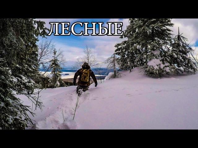 В ТАЙГЕ ЗИМОЙ С МИНИМАЛЬНЫМ СНАРЯЖЕНИЕМ Горы Снег Бушкрафт Winter Solo Overnight Bushcraft Camp