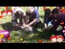 Пикник Фиткервс отдых на природе