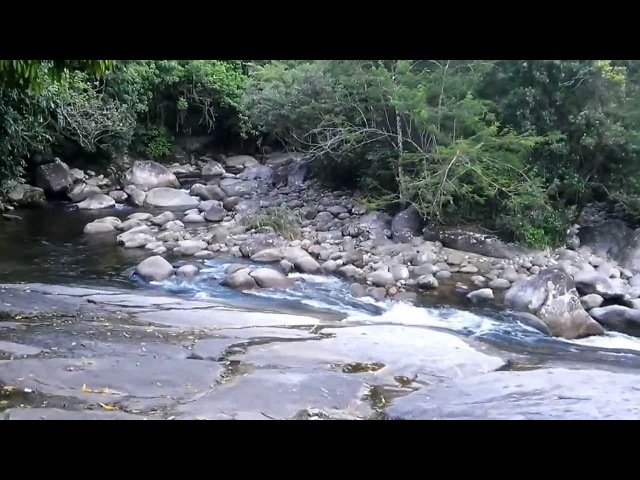 Cabeça d'Água - Poço da laje - Guapimirim RJ 23/01/2014