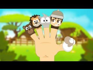 Learn Finger Names in Arabic for Kids -