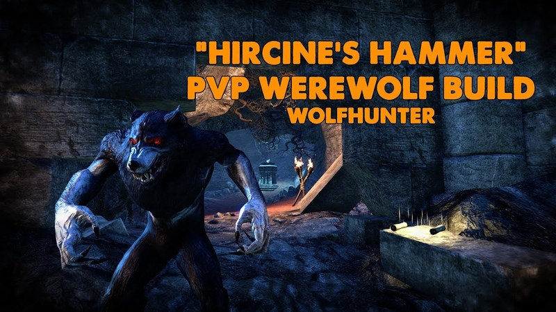ESO Hircine's Hammer PVP Werewolf Build Wolfhunter