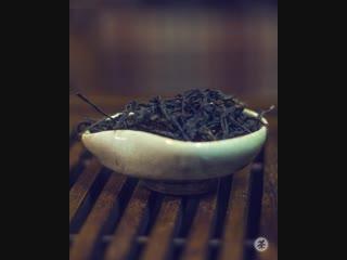 Тайная жизнь Чайной почты видео для smm