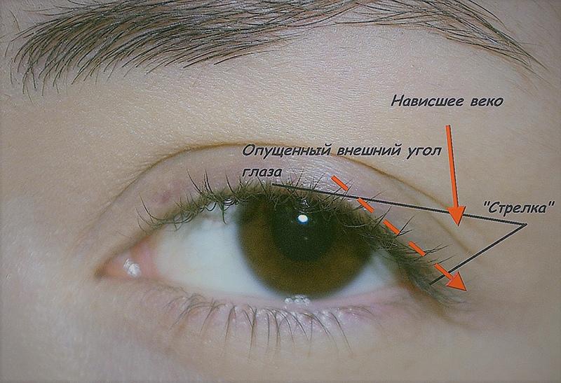 Идеальное сочетание: как подобрать тени под цвет глаз, изображение №8