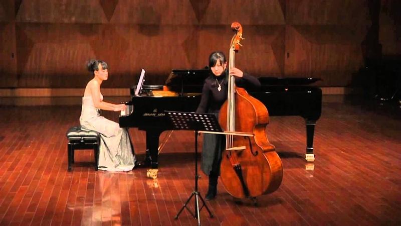 Hoffmeister Double Bass Concerto No. 1 in D, 1st Mov. by Fan Jie