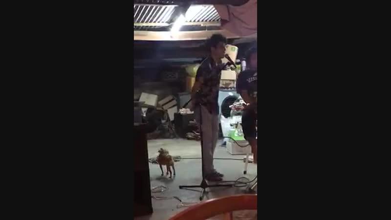 собака ебака