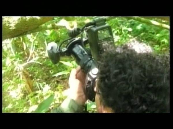 Mais Ação: Ilha Queimada Grande (A Ilha das Cobras) - 17/07/2012