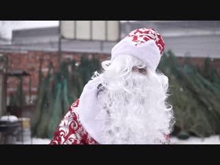 Купить новогоднюю елку или ель с доставкой в СПб. После встречи с Сантой