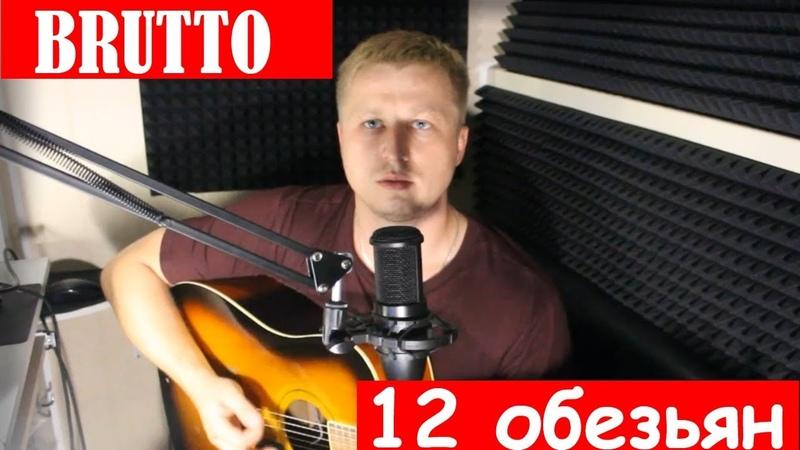 Ляпис Brutto 12 обезьян Кавер на гитаре Sergey Feskin Советуем вам посмотреть