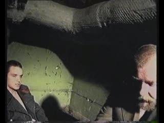 Ахуительная история, аж шишка встала (с) Зеленый слоник