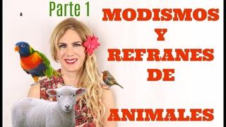 Modismos y refranes de animales. Parte 1. Idioms with animals in Spanish. Part 1.