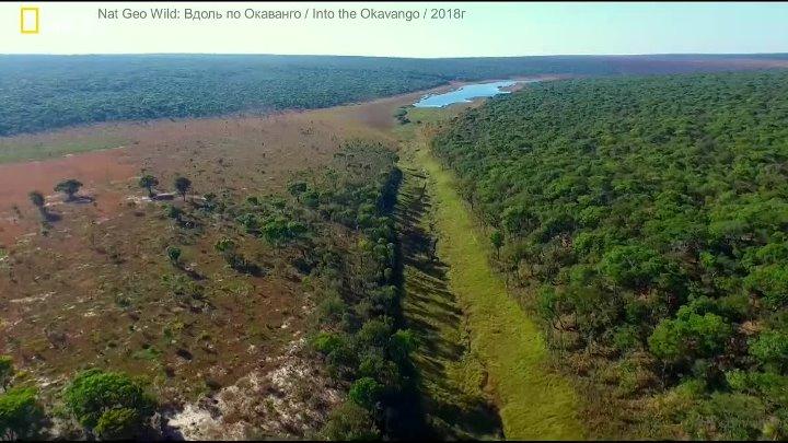 Nat Geo Wild: Вдоль по Окаванго / Into the Okavango / 2018г