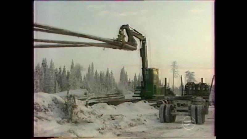 ОАО Луковецкий ЛПХ и ОАО Светлозерсклес. Архангельская область, 2001г.