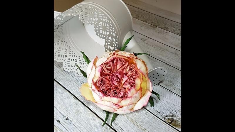 Englische Rose aus Foamiran