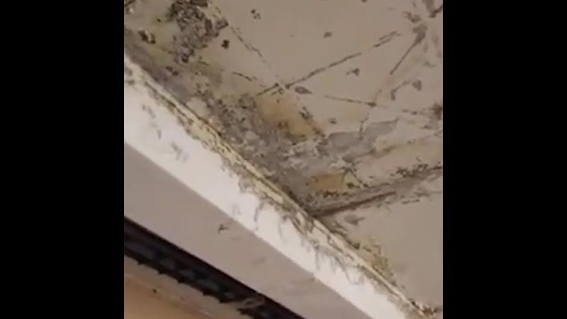 В ярославской школе рушится потолок