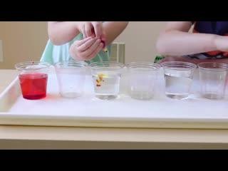 Познавательные эксперименты для детей