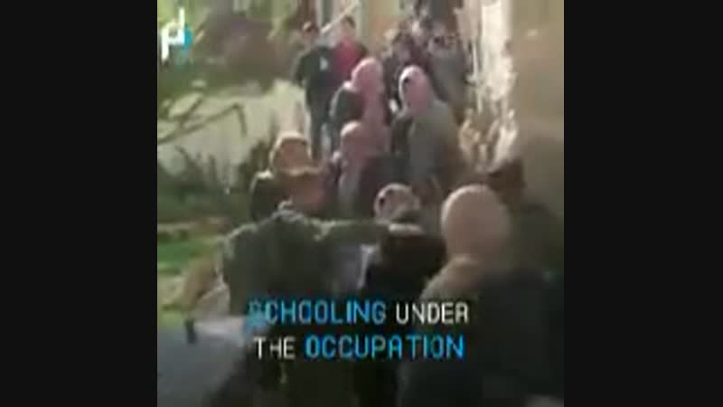 Here is how Palestinian children go to school daily in Hebron in the WestBank