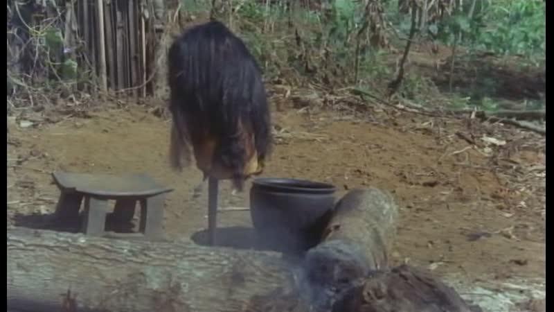 National Geographic - Headshrinkers of the Amazon (2009)