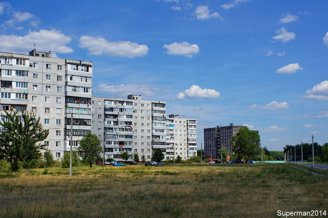 деревня Давыдово