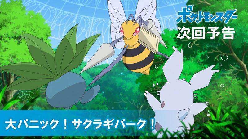 公式 アニメ「ポケットモンスター」 6月7日 日 放送分予告 「大パニック!サクラギパーク!」
