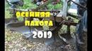 осенняя пахота 2019 МТЗ 82\ новые лемеха и как пашет с предплужниками