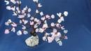 Flores de cerezo con nylon bonsai sakura