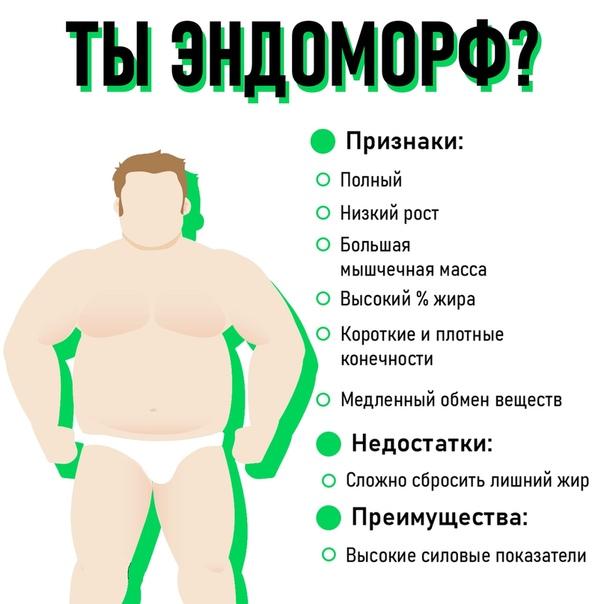 Диета для эндоморфа для похудения женщина