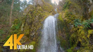 4K Beautiful Waterfalls of Oregon in Wintertime - Breathtaking Nature Scenery & Waterfall Sounds