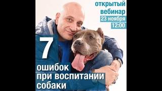 7 ошибок владельцев собак (Антуан Наджарян)