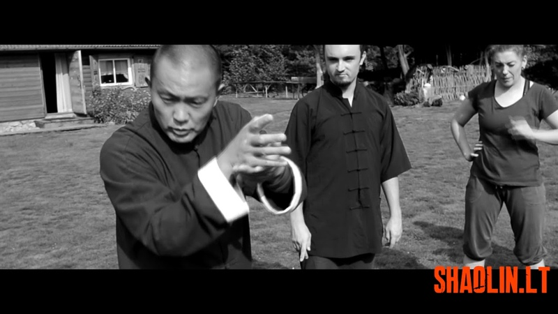 Traditional Shaolin Quan 传统少林拳 applications with Master Hu Zhengsheng 胡正生led
