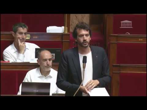 LREM REFUSE D'INTERDIRE LA CASTRATION A VIF DES PORCS