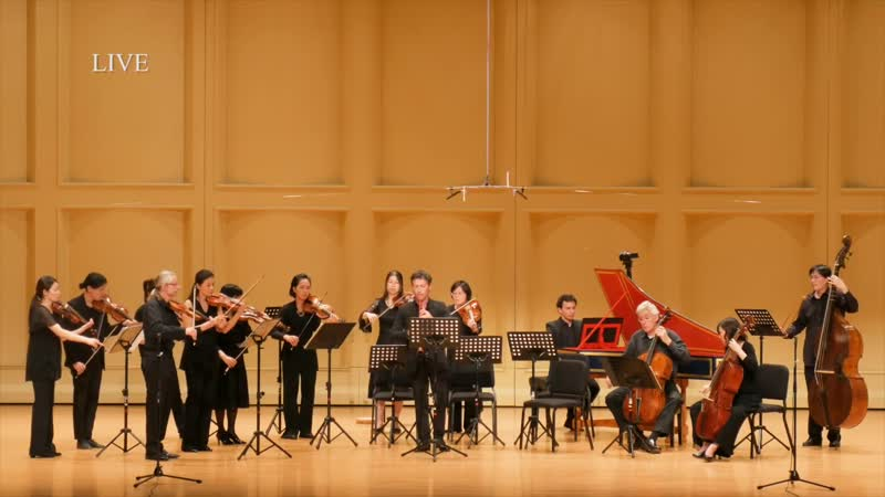 G. P. Telemann - Oboe Concerto in E minor TWV 51e1 - Formosa Baroque [Patrick Beaugiraud]