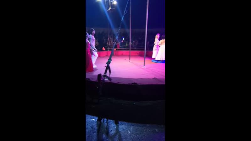 Цирк Шапито в Сургуте