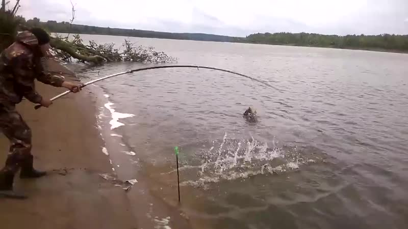 Рыбалка не удалась hs,fkrf yt elfkfcm