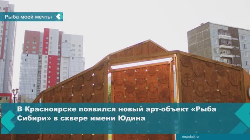 В Красноярске появился новый арт-объект «Рыба Сибири» в сквере имени Юдина