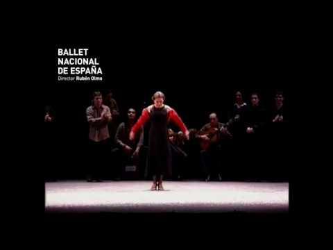 FIN DE FIESTA GALA DE 20 ANIVERSARIO Ballet Nacional de España
