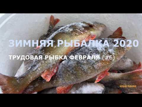 ТРУДОВАЯ РЫБКА ФЕВРАЛЯ День за днём на разливах ВТВ Оттепель морозы Рыбалка на Кольском