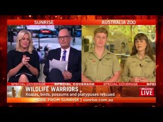 terri and robert irwin about australian bushfires - sunrise