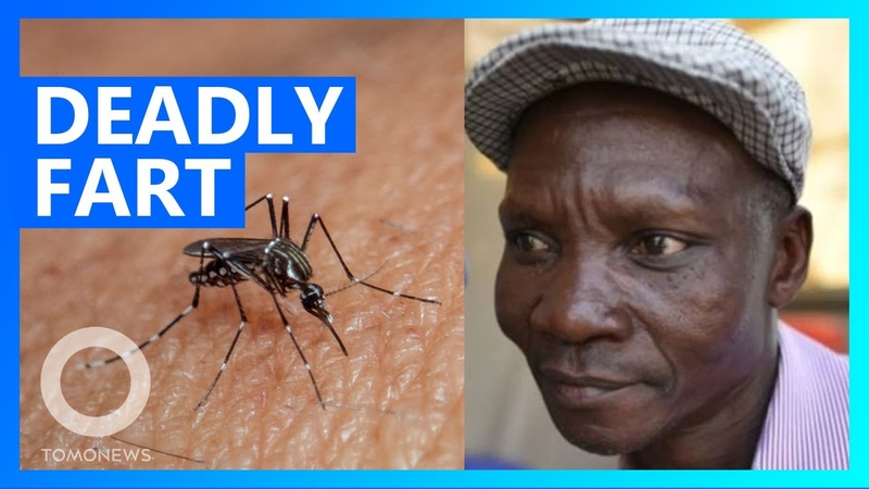 Man's mosquito killing fart scouted by repellant companies TomoNews