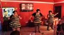 Зажигательный танец трёх пышных пчёлок. Позитивчик