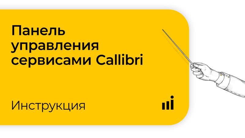 Панель управления сервисами Callibri