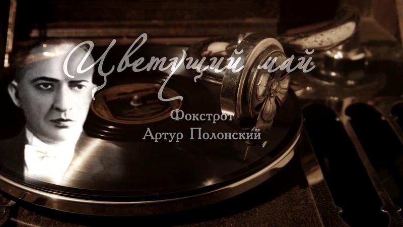ЦВЕТУЩИЙ МАЙ фокстрот Артур Полонский