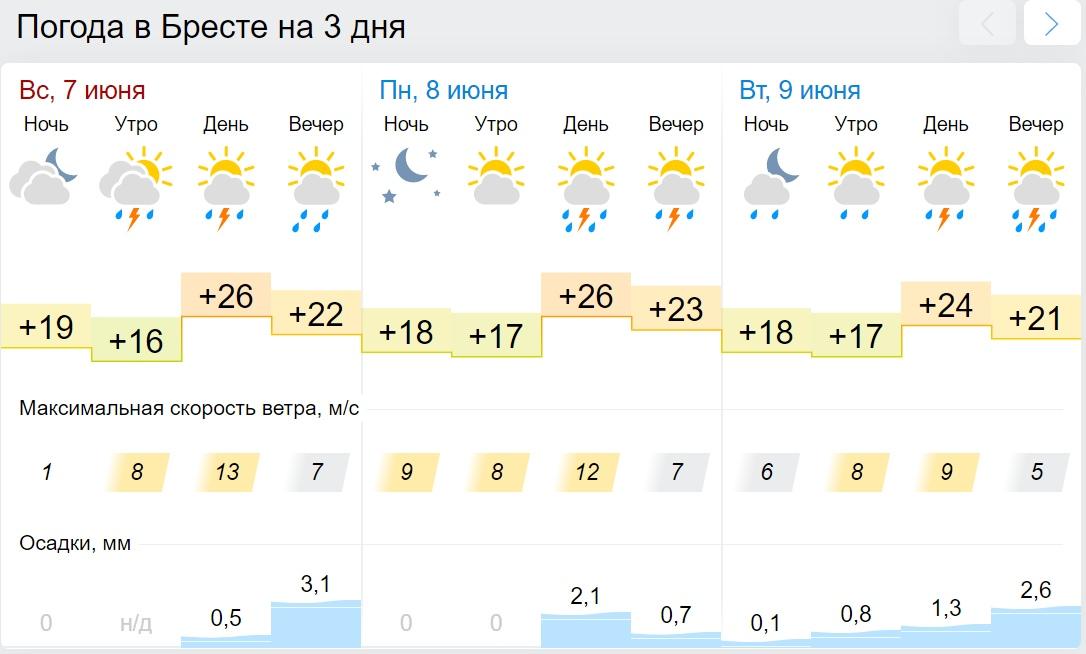 Не поверите, но у нас жара... Оранжевый уровень опасности объявлен в Беларуси 8 июня