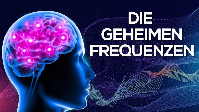 Programmiere dein Gehirn neu Das Geheimnis der Frequenzen