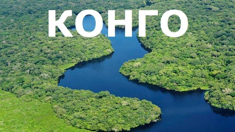 КОНГО - река чудовищ. Дикая природа, фильм 2017 NAT GEO WILD конголезский попугай BBC