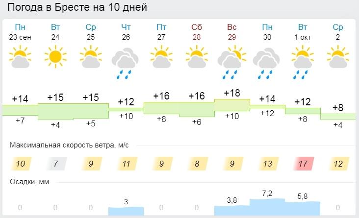 Облачно и без осадков. Все о погоде в Бресте на этой неделе