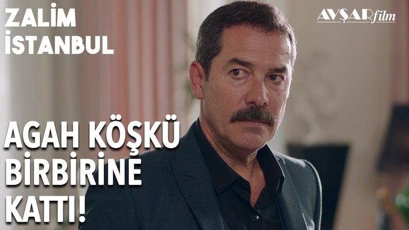 Kimseye Rahat Yok! Maymun Gözünü Açtı | Zalim İstanbul 15. Bölüm