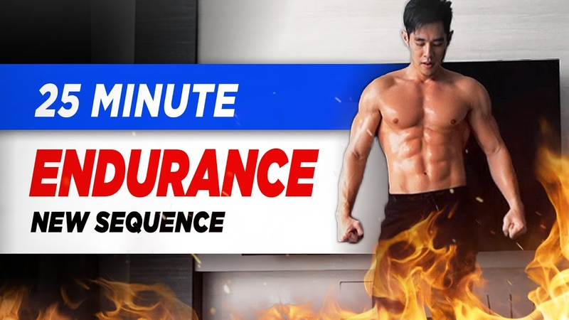 [Level 4] 25 Minute Fat-Burning Endurance Workout! (new style of workout!)