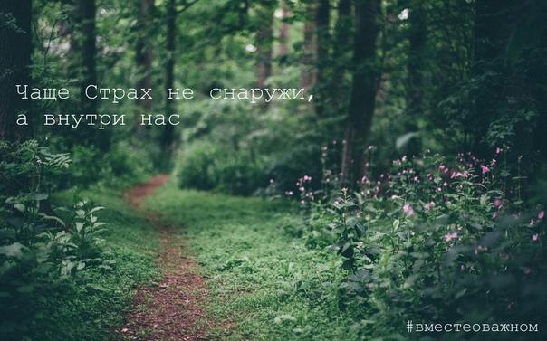 Большое препятствие на пути получения желаемого  это страх