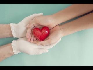 Отдать свою кровь, чтобы спасти чью-то жизнь. Как на Ставрополье развивают донорство